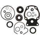 Dichtungs Kit Johnsin Evinrude Lower Unit Seal Kit